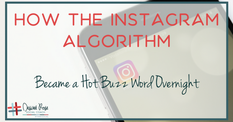 How the Instagram Algorithm Became a Hot Buzz Word Overnight